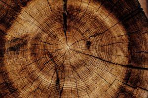 obrábanie dreva, unimat